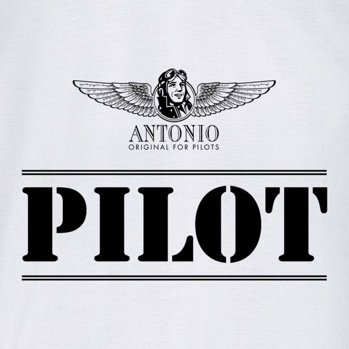Polo aviation sign of PILOT WH