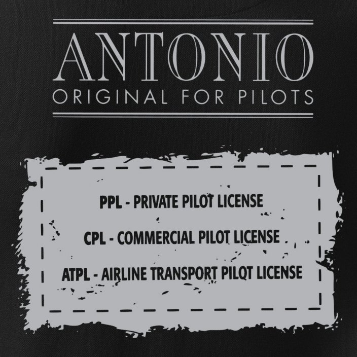 Polo aviation sign of PILOT BL